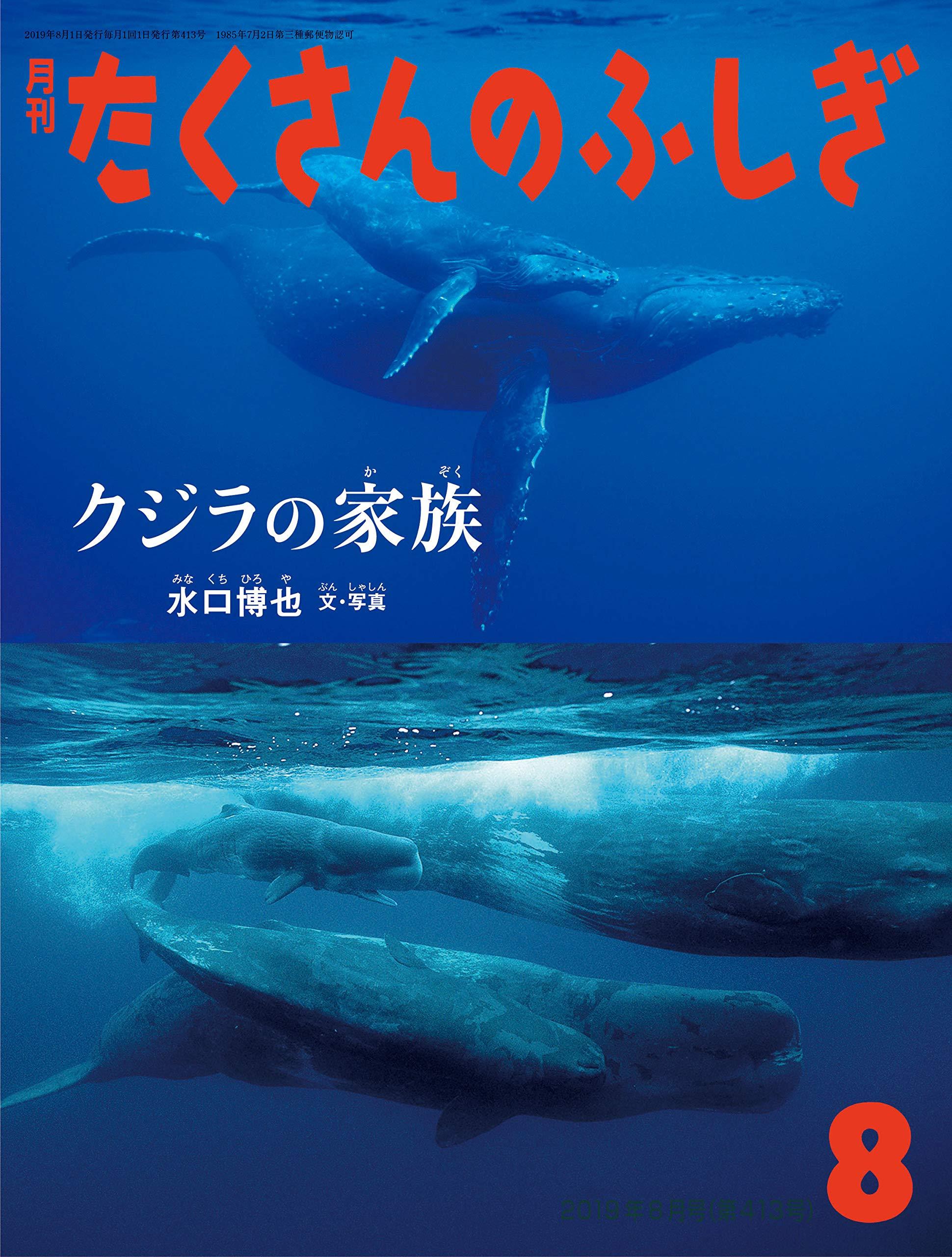 シロ ナガスクジラ 漢字 で 書く と