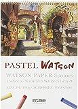 ミューズ パステル紙 パステルワトソンブック F4 190g ホワイト、ナチュラル、グレー 15枚入り PSW-2604 F4