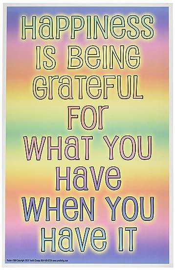 Amazon.com: Youth cambiar talleres felicidad y Gratitud ...