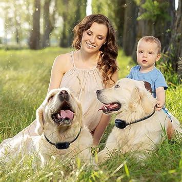 100 levels dog fence underground u2013 dog shock fence u2013 train all breeds u0026 sizes efficiently
