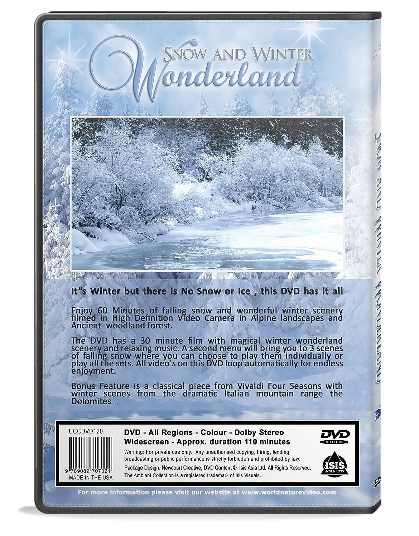 Amazoncom Christmas DVD Falling Snow Winter Wonderland With - 30 wonderfully wintery scenes around world