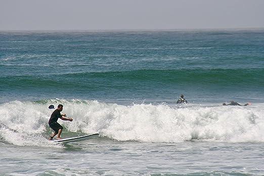 Amazon.com : Surf & Sup Single FCS Fin - Single Slot Longboard & SUP FCS Fins - 9