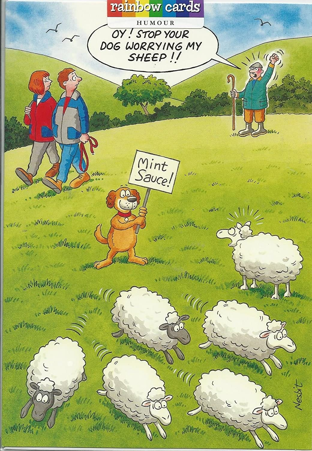 DOG WORRYING SHEEP FUNNY HUMOROUS BIRTHDAY CARD THE FUNNY SIDE OF – Birthday Cards Humour