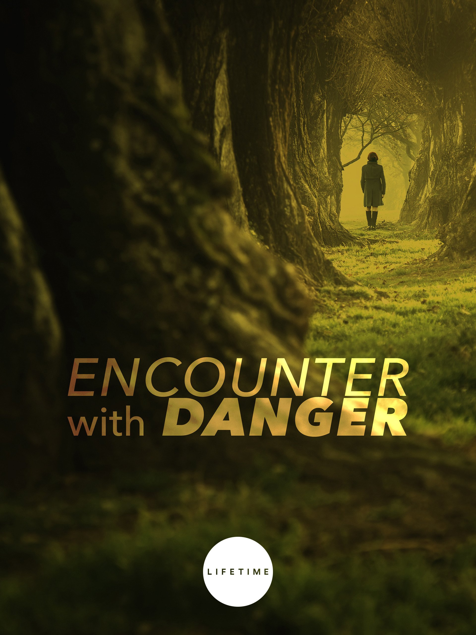 Amazon Com Watch Encounter With Danger Prime Video