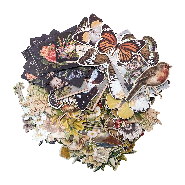 Layers - Botanical by Tim Holtz Idea-ology, Chipboard, 83 Dye-Cut Pieces (TIMTH.93554) Advantus Corp