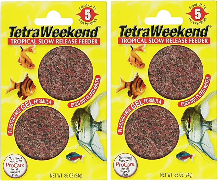 The Best Tetra Fish Food Vacation