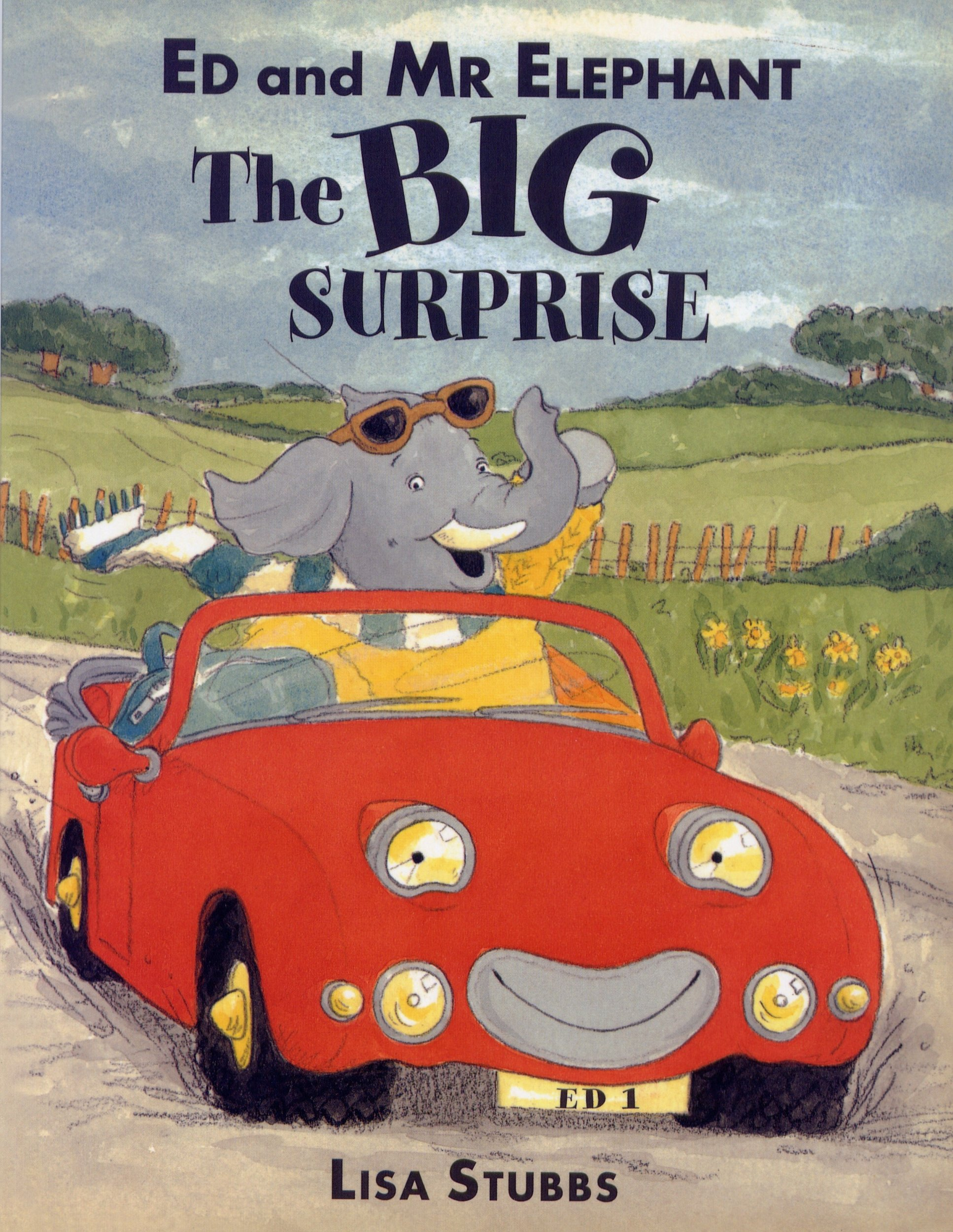 Ed & Mr Elephant, The Big Surprise by Lisa Stubbs: Amazon.co.uk: Lisa  Stubbs: 9781905606955: Books