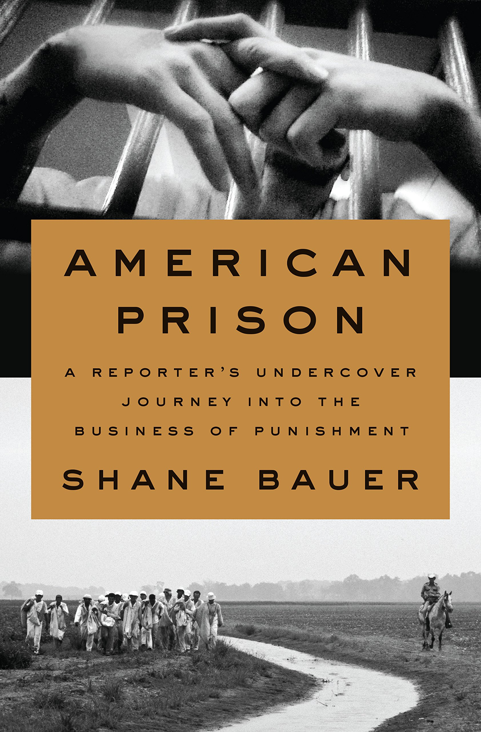 american prison a reporters undercover journey into the business of punishment ebook
