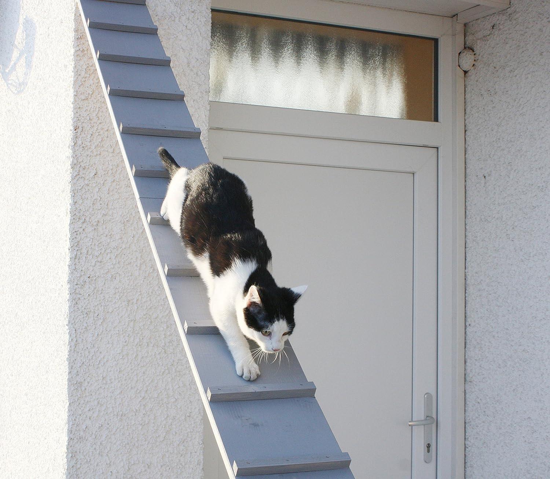 Escalera para gatos, escalera para el balcón, resistente a la ...