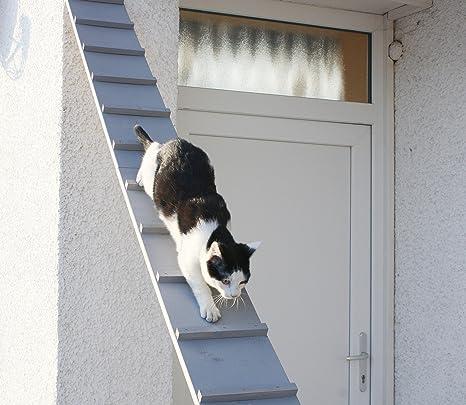 Escalera para gatos, escalera para el balcón, resistente a la intemperie,