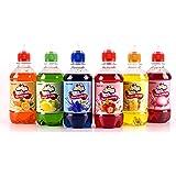 Slush Syrup: Multi-Geschmack Packet (6x 330ml) zum Herstellen von Iced Slushies
