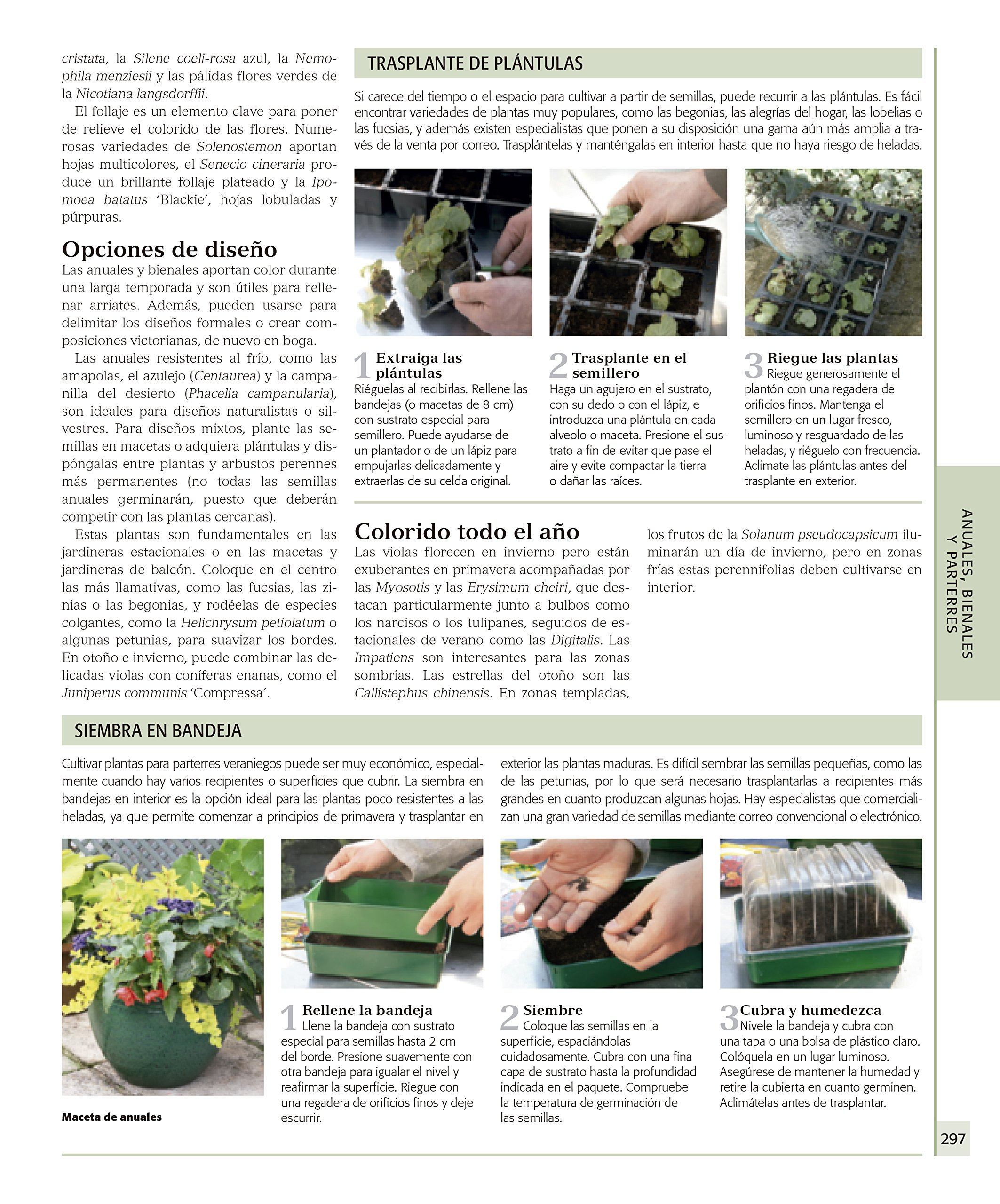 ENCICLOPEDIA DE PLANTAS Y FLORES. THE ROYAL HORTICULTURAL SO: 9788416449798: Amazon.com: Books