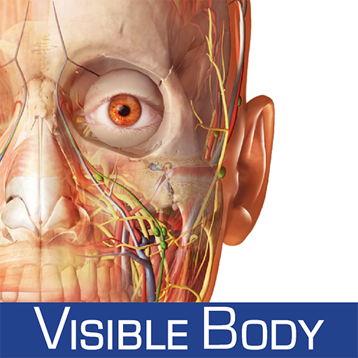 Amazon Human Anatomy Atlas Appstore For Android