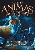 Animas Academy – Die verschollene Prophezeiung