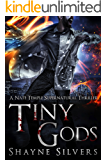 Tiny Gods: A Nate Temple Supernatural Thriller Book 6 (The Temple Chronicles)