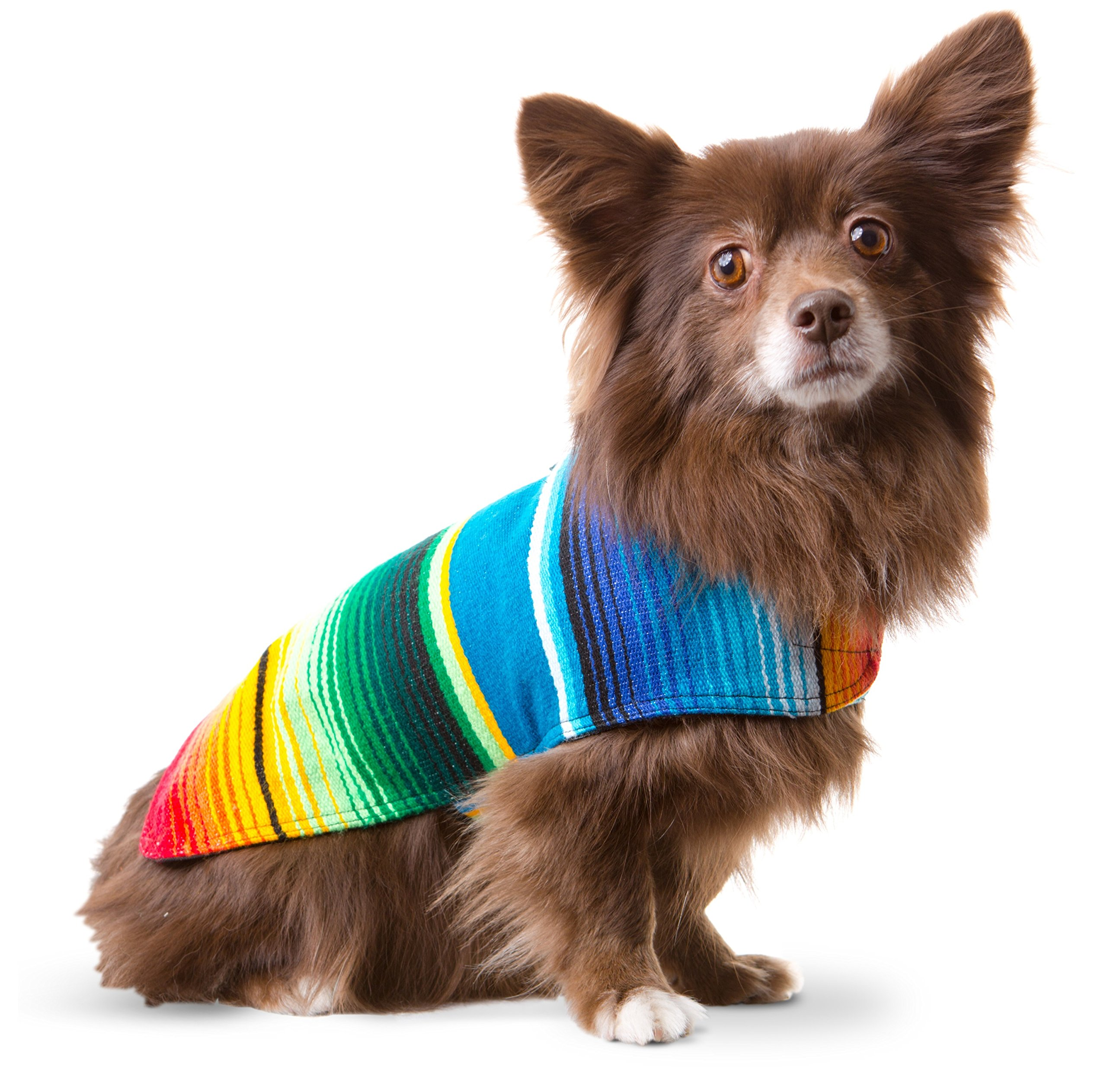 Baja Ponchos Dog Clothes - Handmade Dog Poncho from Authentic Mexican Blanket by (No Fringe, Small)