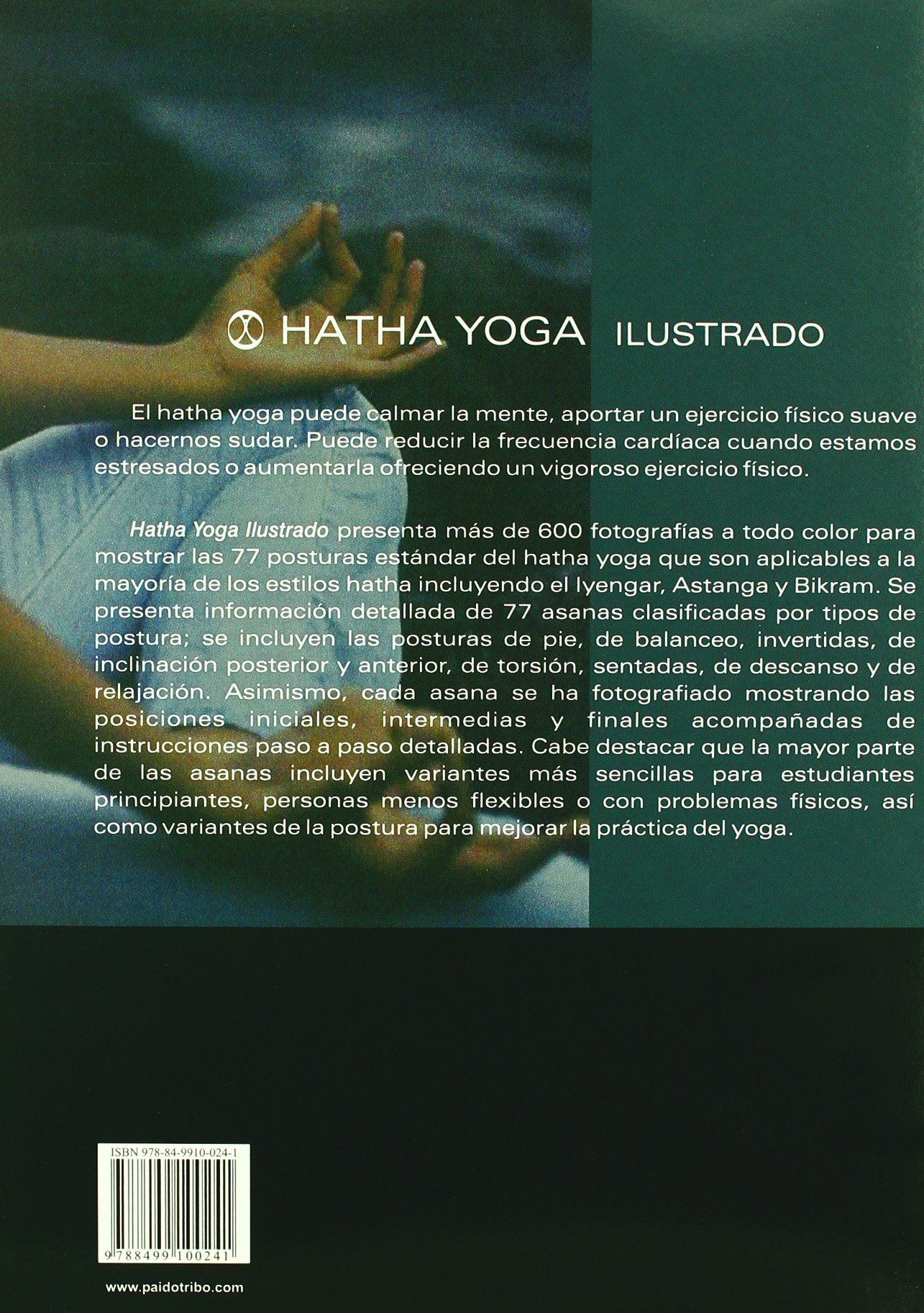 Hatha yoga ilustrado (Color): Amazon.es: Martin Kirk, Brooke ...