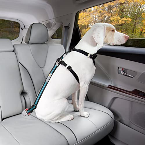 Dog Seat Belt Pet Safety Vehicle Seatbelt Harness