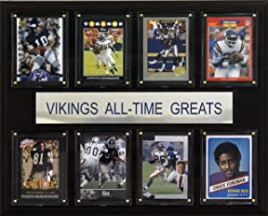 NFL Minnesota Vikings All-Time Greats Plaque
