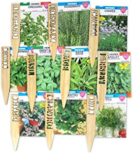 Window Garden Herb Seeds - 10 Popular Varieties for Indoor or Outdoor Planting, Growing. Attractive Markers and Quality Seed - Basil Parsley Dill Oregano Rosemary Chives Mint Sage Thyme Cilantro.