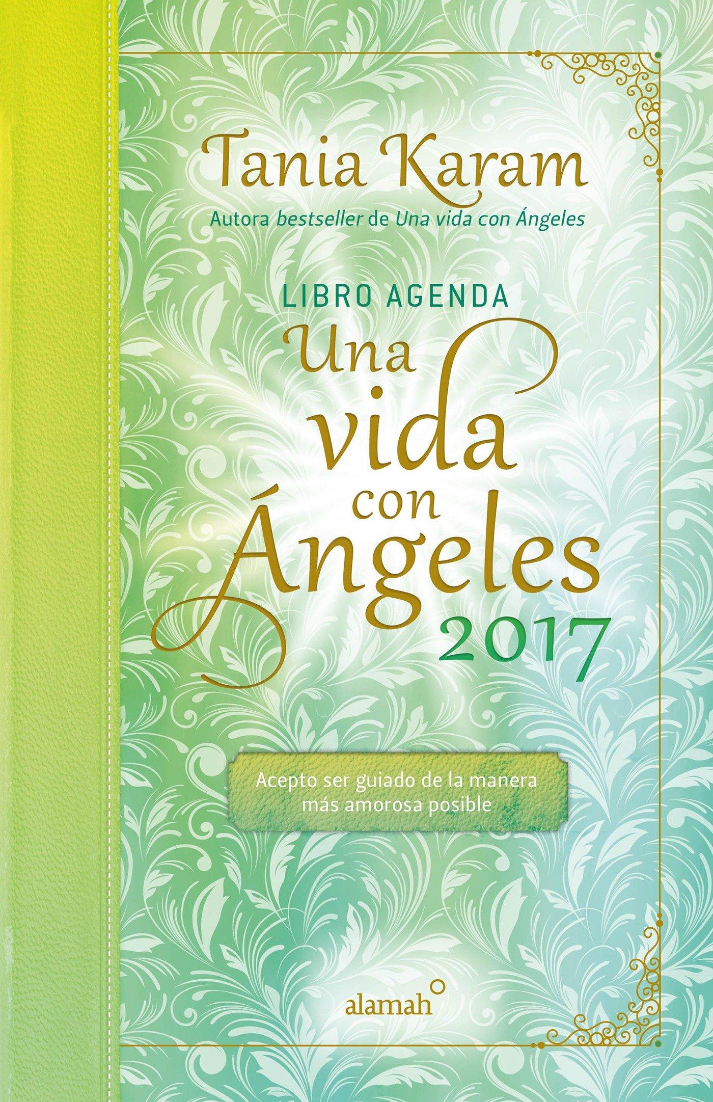 Libro agenda. Una vida con angeles 2017 / A Life With Angels ...