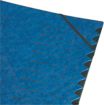 Import Allemagne Herlitz 5001128 Trieur A4 Colorspan avec onglets 1-12 et A-Z 355 g//m/²