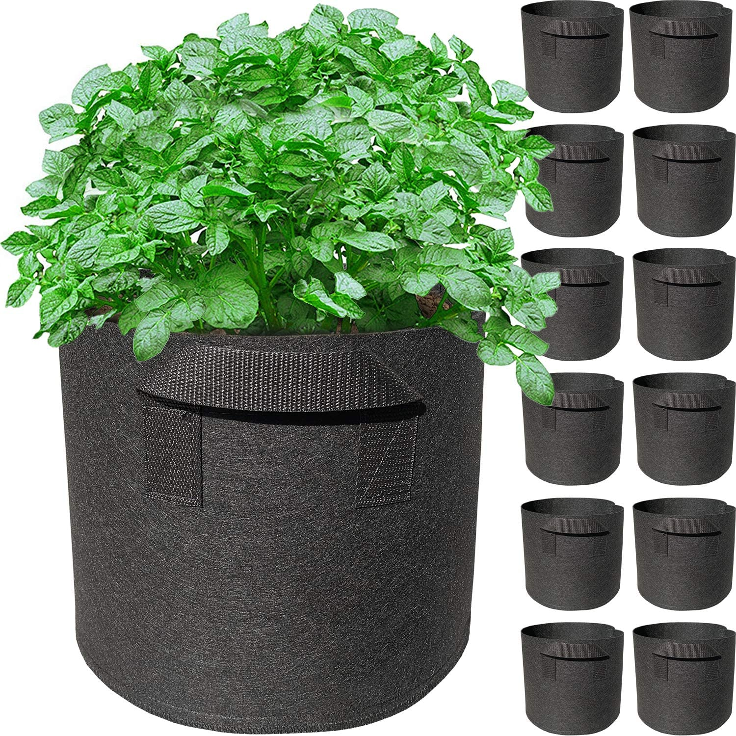 12 Pack 1 Gallon Grow Bags with Handles Garden Vegetable Flower Grow Bags Nonwoven Aeration Fabric Pots Container for Nursery Garden and Planting Grow (1 Gallon, Black)
