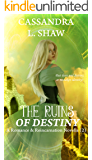 The Ruins of Destiny: Romance & Reincarnation Novella (2)