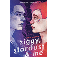 Ziggy, Stardust and Me book cover