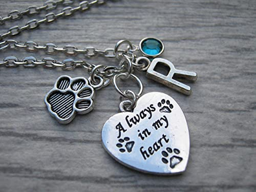 Pet remembrance jewelry gift. Dog /& cat memorial sympathy necklace gift