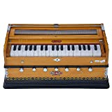 Harmonium Musical Instrument, BINA No. 8, 7