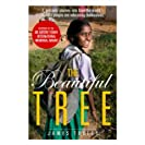 The Beautiful Tree: A personal journey into how the...