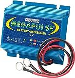 Megapulse 655000032 Batteriepulser für 12 Volt Batterien, Anzahl 1