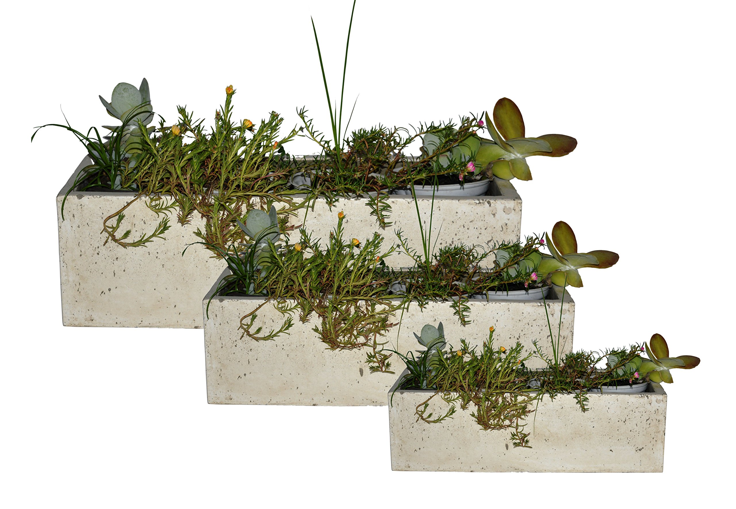 Happy Planter Rectangle Natural Cement Fiber Planter Set, of 3, White