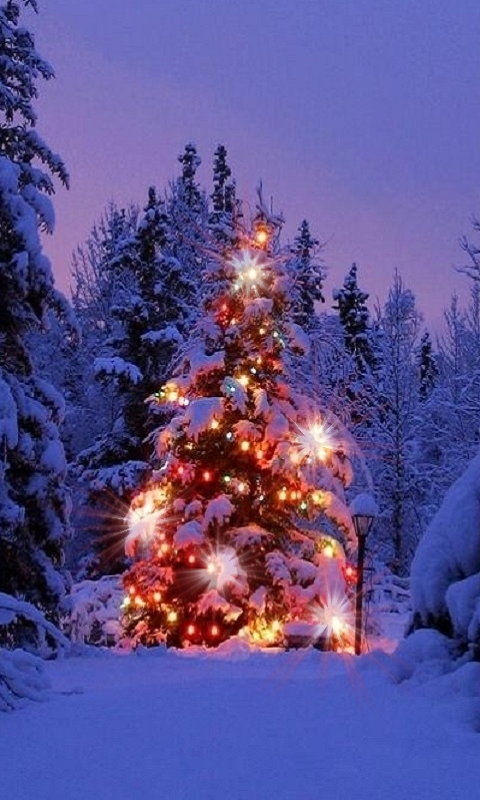 christmas live wallpapers 10 appstore for