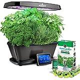 AeroGarden Bounty Elite Wi-Fi with Gourmet Herb Seed Pod Kit, Platinum