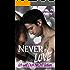 Never in Love - Ich will Dich NICHT lieben: Sinnlicher Liebesroman