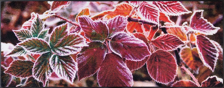Wash+dry 083313 Frozen Leaves Fußmatte, Acryl, Violet, 190 x 75 x 0.7 cm