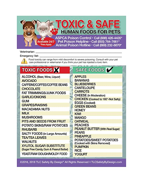 """Enhanced Toxic and Safe Foods TRADEMARKED Poison for Pets Dogs Cats Emergency Home Alone 5"""" x 7"""" Veterinarian Approved Refrigerator Safety Magnet"""
