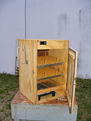 Build an 162 Egg Incubator: Simple D.I.Y Incubators that work