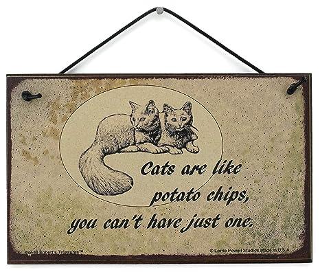 Amazon.com: 5 x 8 Estilo clásico Sign con gatos diciendo ...