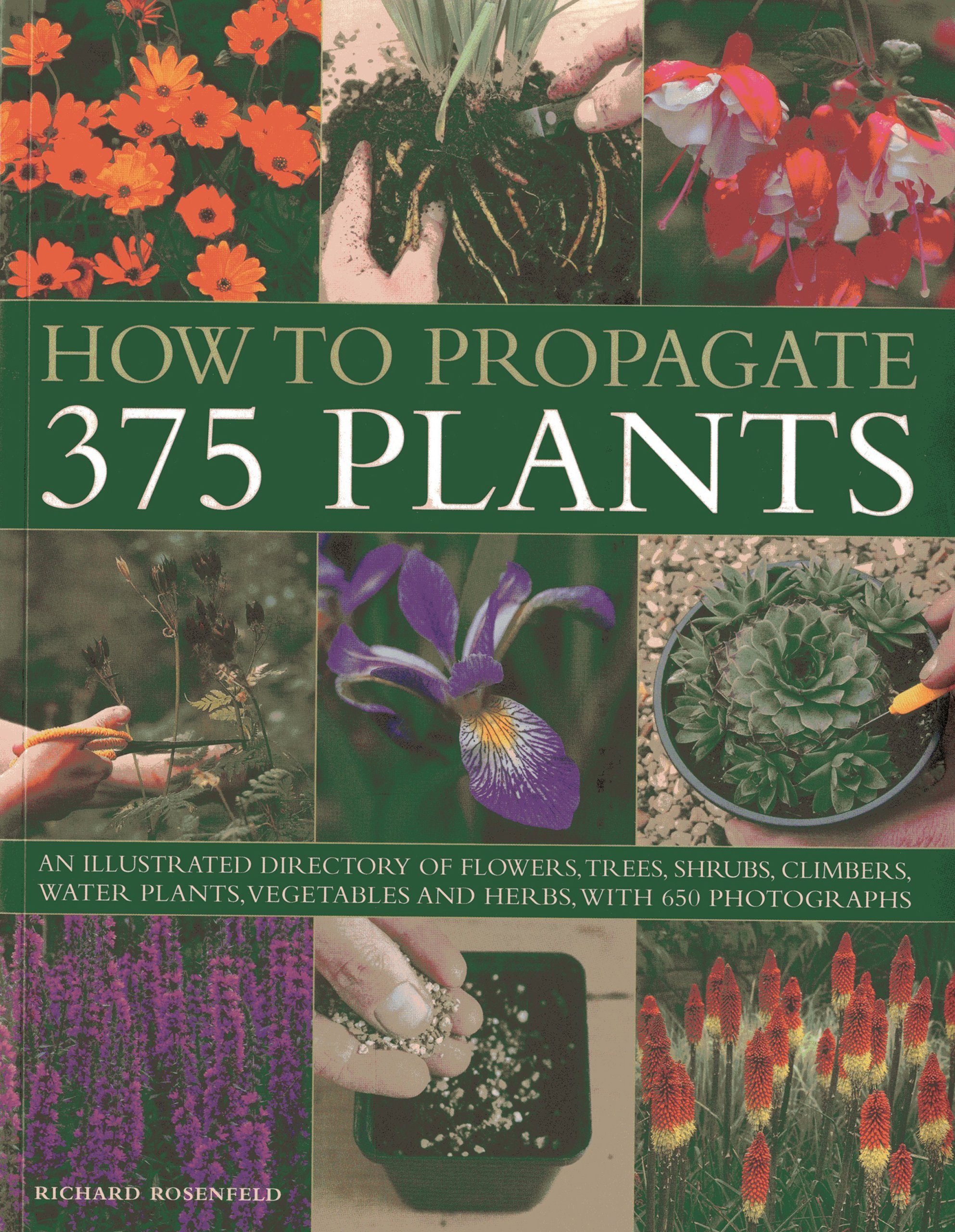 How to Propagate 375 Plants: An illustrated directory of flowers, trees, shrubs, climbers, water plants, vegetables and herbs, with 650 photographs PDF