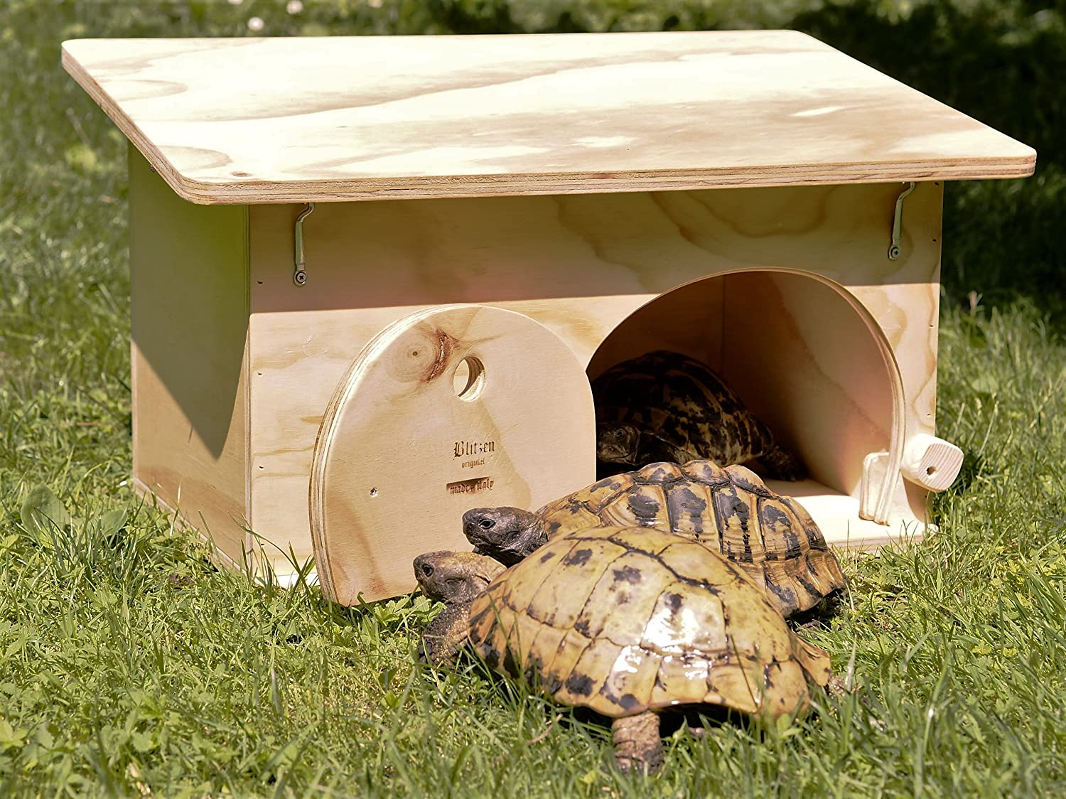 Blitzen, House / Refuge for Tortoises with Bottom, 100 % Made in Italy