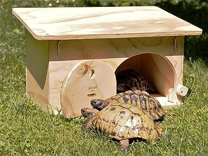 Blitzen - Caseta de refugio con base para tortugas de tierra. Producto fabricado completamente