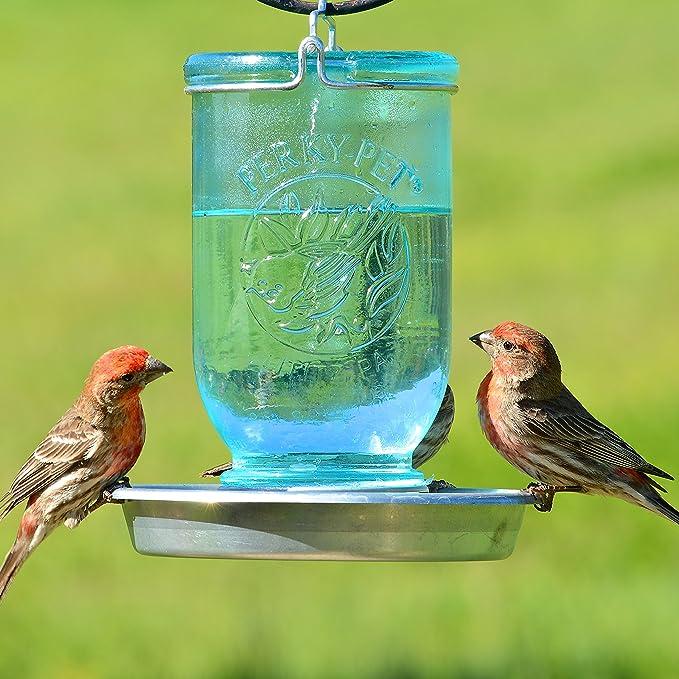 Opus [Perky-Pet] 783 Bebedero para pájaros Tarro de cristal: Amazon.es: Jardín