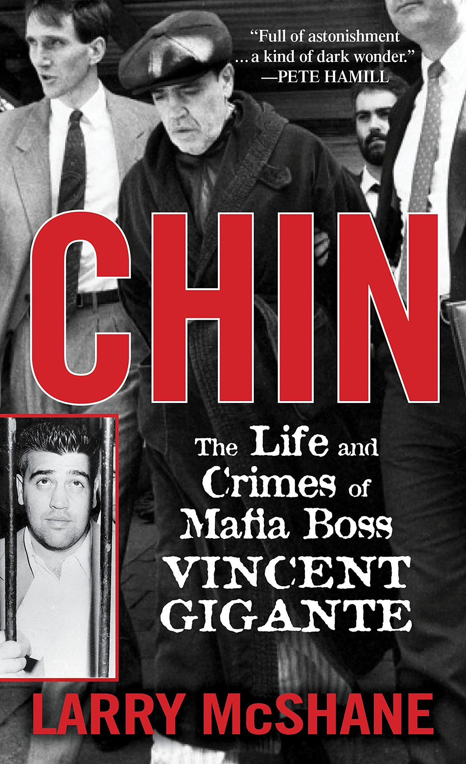 Read Online Chin: The Life and Crimes of Mafia Boss Vincent Gigante PDF