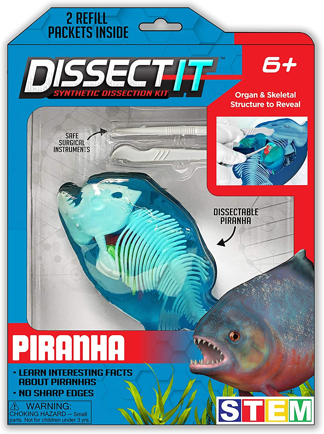 Top Secret Toys Dissect-It Simulated Synthetic Lab Dissection STEM Toy   Kids Home Learning Science Project, Great for Young Scientists! - Piranha