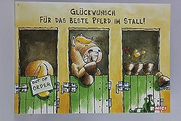 Nici 60011 Postkarte Nr 9 Geburtstag Pferd Gluckwunsch Fur