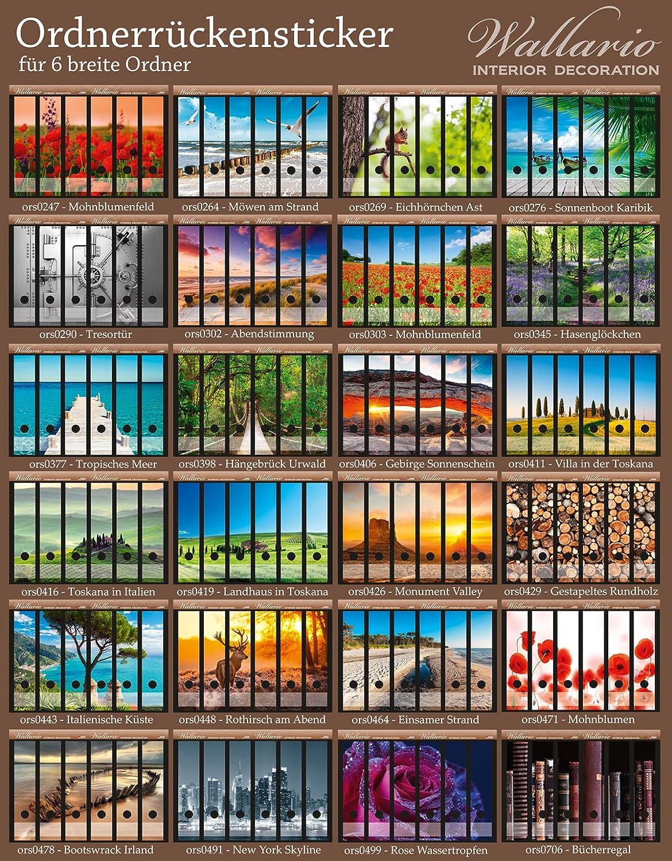 Gr/ö/ße 8 x 3,5 x 30 cm passend f/ür 8 schmale Ordnerr/ücken Bunte Streifen mit Farbe und Holzstruktur in Premiumqualit/ät Wallario Ordnerr/ücken Sticker Buntes Holz