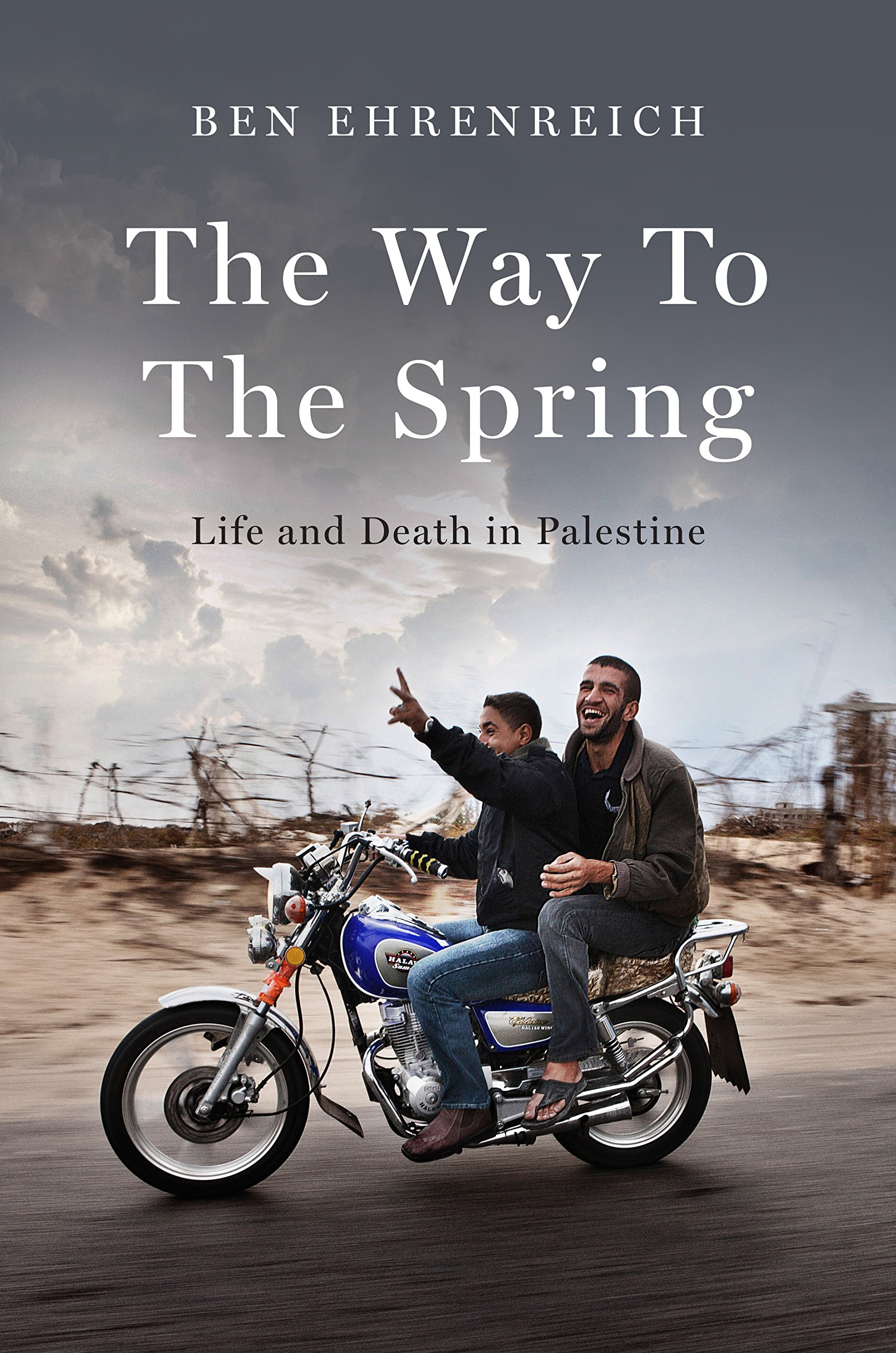 Read Online The Way to the Spring: Life and Death in Palestine PDF